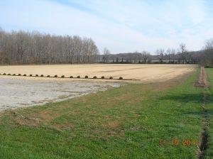 T'ship Field 15